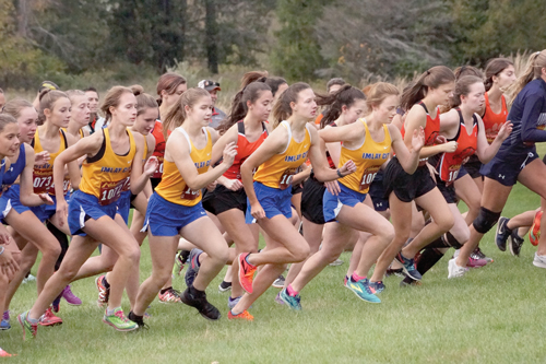 Times selects All-Area girls' cross country team