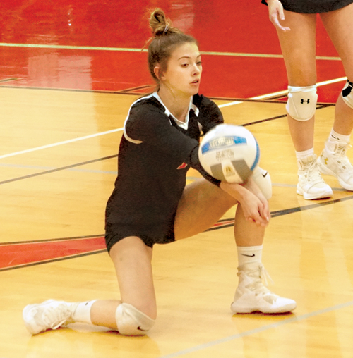 Times names All-Area volleyball team