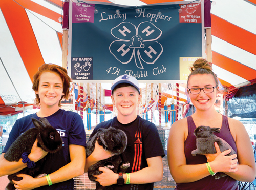 Local fairs still on for 2020