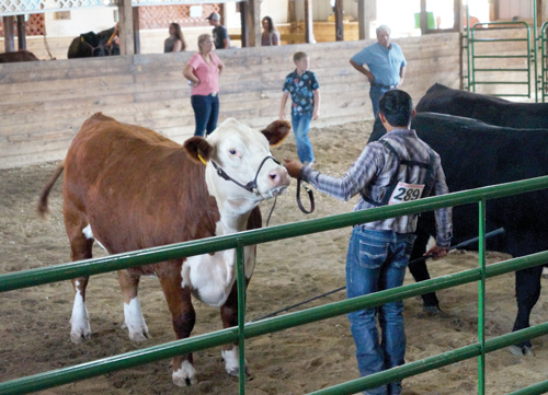 Virus concerns force change in traditional fair
