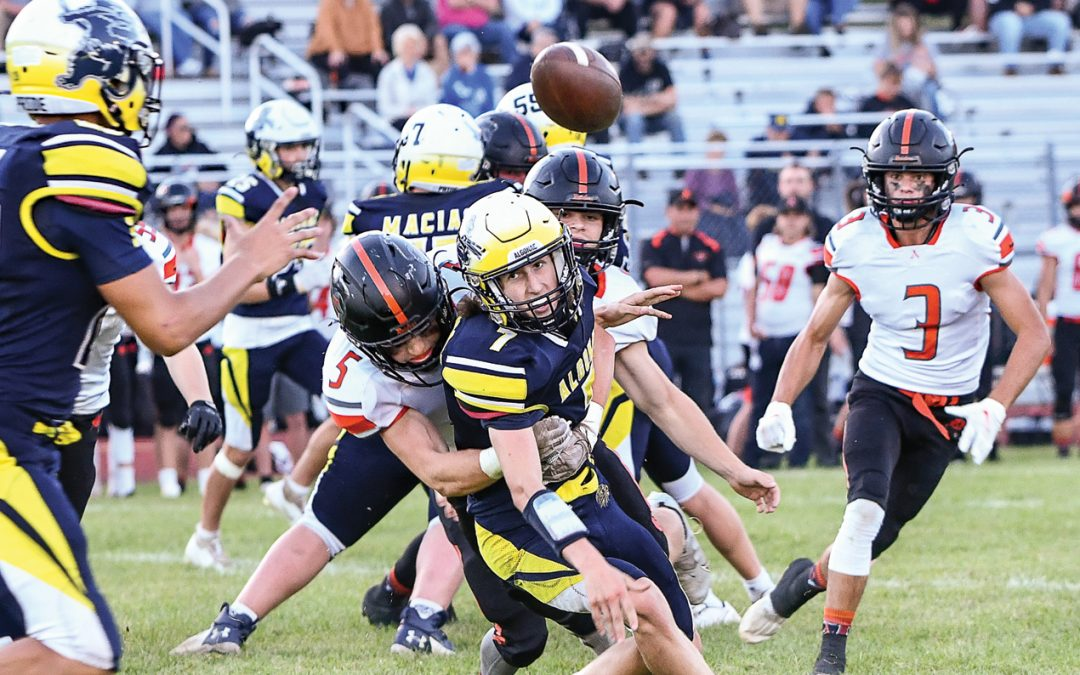 Almont remains unbeaten in BWAC